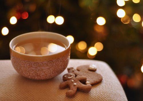 biscuit gingembre Marianne Lefebvre | Nutrition spécialisée en nutrition internationale